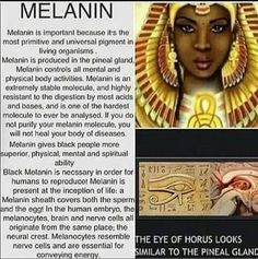 Love the melanin skin your in
