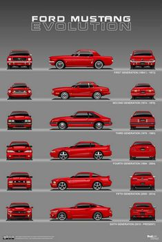 Cars Discover Oct 10 Ford Mustang Evolution: 1964 Present - Cars and motor Ford Mustang Fox Body Ford Mustang Shelby Mustang Cars Mustang Logo Shelby Chevy Trucks Pickup Trucks Pickup Auto Evolution Ford Mustang Fox Body, Ford Mustang Shelby Gt500, Mustang Cobra, 2015 Ford Mustang, Ford Classic Cars, Classic Trucks, Pickup Auto, Auto Girls, Bmw Autos