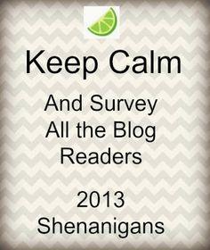 Looking Back On 2013- Blog Reader Survey (Pssst... That's YOU!)