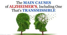 Researchers reveal the first theoretical evidence for human-to-human transmission of misfolded proteins associated with Alzheimer's Disease pathology. http://articles.mercola.com/sites/articles/archive/2015/09/24/alzheimers-transmission.aspx