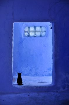 "Mademoisielle: Chefchaouen.     I love this great scene ! The color blue is so vibrant that it gives the snow a ""blue"" shade all by itself.   AND. The black kitty certainly steals the show. Awesome !"