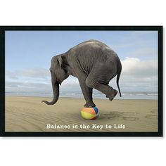 Balance - is there such a thing between a healthy work/life balance... fingers crossed I'll find out! Sea change here I come!