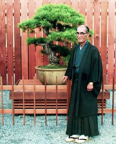TBT - Bonsai teacher and artist Yuji Yoshimura with the Imperial Pine at the 1976 opening of the National Bonsai & Penjing Museum. The renovated Japanese Pavilion will open later this year, which is also the Museum's 40th anniversary.