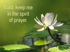 Eph 6:18 Pray in the Spirit at all times. Stay alert and be persistent in your prayers for all believers everywhere.
