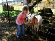 agritourism old west | Amazin' Acres of Fun - Tennessee Vacation