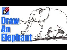 How to draw an Elephant Real Easy - YouTube
