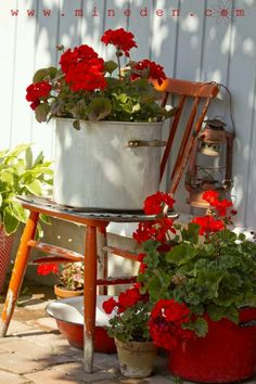 Country Farmhouse container vignette