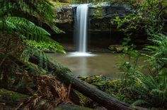 This is one from my archives taken in August 2015  Kalimna falls near Lorne on the Great Ocean Road  #waterfall #wow_australia #earthslocations #ig_australia #ig_discover_australia #oztourguide #photooftheday #australia #australiagram #seegor #focusaustralia #greatoceanroad #Lorne #landscape #leefilters #longexposure #leebigstopper #victoria #visitvictoria #VisitGreatOceanRoad #beautiful #nature #nikon1635 #nikond750 #nikonaustralia #mynikonlife by craig_richards_photography…