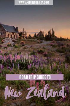 Your Complete New Zealand Road Trip Guide - Anita Hendrieka Brisbane, Melbourne, Sydney, Road Trip Essentials, Road Trip Hacks, Road Trips, New Zealand Travel Guide, New Zealand South Island, Travel Guides