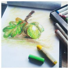 Catching up with #novsketchbookmagic day 14 theme - acorns. Found some really old oil pastels in a drawer, fun to use these again! #sketchbook, #autumn, #illustration, #acorns, #oaktree, #oilpastels, #sketchwork, #nature.