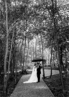 For a unique wedding in a truly idyllic woodland setting, the perfect location is Westport Woods Hotel in Co. Our family run hotel is the perfect choi . Hotel Wedding Venues, Planning Your Day, Irish Wedding, Unique Weddings, Woodland, Woods, Backdrops, Wedding Photos, Beautiful