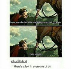 Same Levi same