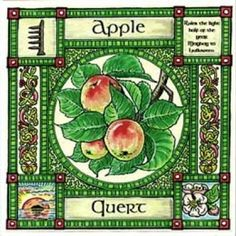 Apple, Ogham name Quert, rules the light half of the year, and its element is that of water. It is sacred to Venus, Aphrodite and Eve. In Divination it represents love, healing, poetic inspiration and immortality. In the west where the sun sets is the magical Isle of Avalon, the island of the apples, great heroes of myth and legend are taken there at death, and thereby become immortal.