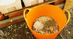 Be self-sufficient,make your own healthy and complete nutritional feed for hens