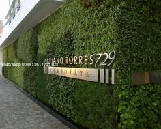 Landscaping Artificial Plants Wall Plastic Grass for Building Wall Coverings with Logo from China