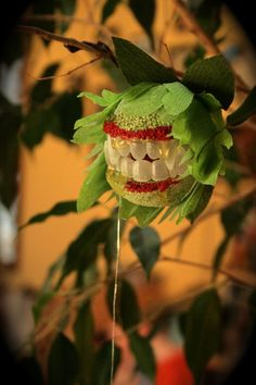 Picture of Horrific Houseplant Costumes: Ferocious Ficus and Rest In Peace Lily