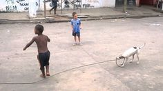 This Clever Dog Has Learned How To Play Jump Rope With Kids In Brazil.