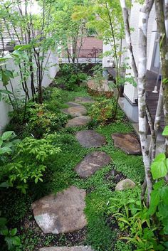 Amazing Small Garden Design Ideas 06 this would be useful on the side of the play house. Amazing Small Garden Design Ideas 06 this would be useful on the side of the play house. Backyard Garden Design, Diy Garden, Small Garden Design, Garden Cottage, Shade Garden, Garden Landscaping, Landscaping Rocks, Backyard Patio, Small Garden Plans