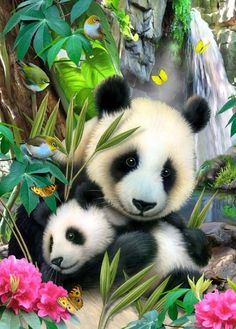 Howard Robinson, artist ~ Mother & her panda cub
