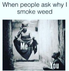 Bold weed shirts for stoners that don't give AF, about other people's opinions. The cannabis apparel that stands out in a crowd. Weed Clothing and Accessories. Funny Weed Memes, Weed Jokes, Weed Humor, Funny Quotes, Funny Humor, 420 Memes, Funny Shit, Asshole Quotes, Funny Stuff