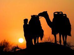 #RasAlKhaimah #Nature #UAE