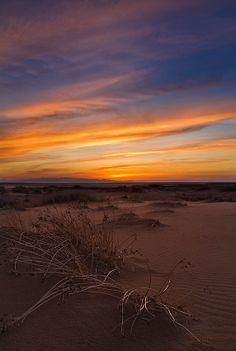 Desert, Landscape