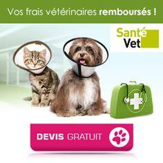Animalerie en ligne : Accessoires pour animaux et alimentation chien chat sur Wanimo