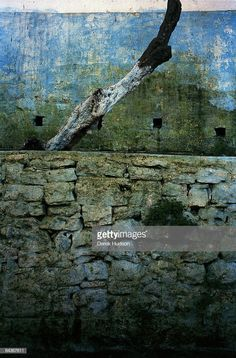 News Photo : The crumbling wall of one of Tangier's famous. Tangier, City Break, Bald Eagle, News, Wall, Animals, Image, Animales, Animaux