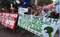 Noticias G80: NOAM CHOMSKY, ERNESTO CARDENAL Y JAMES PETRAS EXIGEN LIBERTAD DE PRESOS POLÍTICOS MAPUCHE :