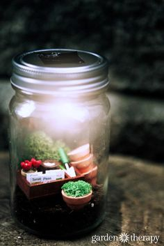 Miniature gardens in mason jars with solar light lids. So adorable! There are more to see in this article - I love the wine and cheese set! Mason Jar Projects, Mason Jar Crafts, Mason Jars, Solar Light Crafts, Diy Solar, Garden Terrarium, Terrariums, Little Gardens, Fairy Houses