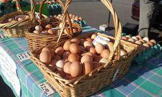 https://flic.kr/p/HBRThp | Roto-o-rangi Eggs | Hamilton Farmers' Market, Waikato, New Zealand