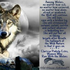 Among Wolves, no matter how sick, no matter how cornered, no matter how alone, afraid or weakened, the wolf will continue. She will lope, even with a broken leg. She will strenuously outwait, outwit, outrun and outlast whatever is bedeviling her. She will put her all in taking breath after breath. The hallmark of the Wild Nature is that it goes on. ༺❁༻ Clarissa Pinkola Estes, Women Who Run With the Wolves .. WILD WOMAN SISTERHOOD™ #wildwomansisterhood #clarissapestes…