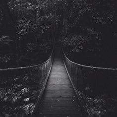 Into the woods. #forest