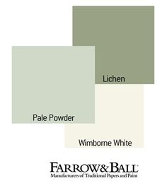 planned colour sheme for the living room - Farrow & Ball paint - pale powder for most of the walls, lichen for the alcoves either side of the fireplace and wimbourne white for the woodwork