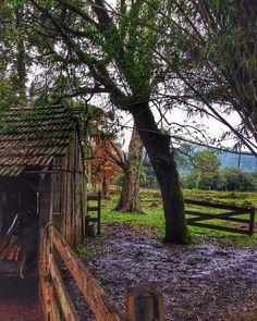 Um dia de chuva também tem seus encantos #malasepanelas #gramado #serragaucha #mtur #doleitorzh #rs #chuva #fotododia #bestoftheday #viagem #natureza #belezanatural  #sitio