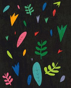 sarahgreenillustration:  sum plants  Sarah Green Illustration.