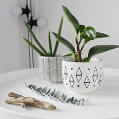 Turn 1 $ thrift store finds into chic and unique mini planters  #DIY #planters