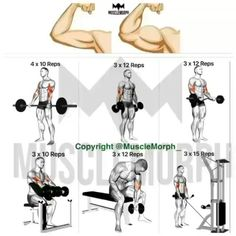 Lower Abs Workouts For Men And Women: Try these abs workouts and great tips on how to lose belly fat fast. Ab Workout Men, Biceps Workout, Workout Tips, Cardio Gym, Effective Ab Workouts, Lower Ab Workouts, Easy Workouts, Fitness Workouts, Workout Routines