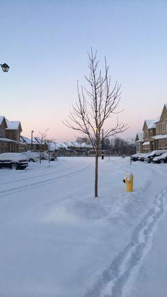 Canada, Snow, Outdoor, Outdoors, Outdoor Games, Human Eye