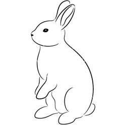 Image detail for -Rabbit vector 323471 by Talli