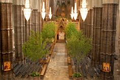 Shane Connolly - floral designer for Prince William and Catherine Middleton's wedding. Church Wedding Flowers, Church Wedding Decorations, Tree Wedding, Our Wedding Day, Wedding Things, Wedding Bells, Royal Marriage, Kate Middleton Wedding, Prince William And Catherine