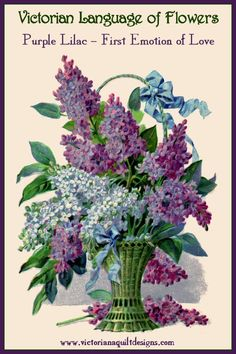 Victorian Language of Flowers - Lilac