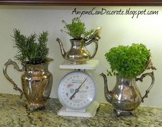 Kitchen Ideas, Photos and Answers :: Hometalk
