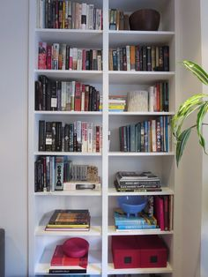 shelves organized by category by laura cattano.