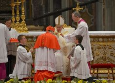 Consistory for the Creation of New Cardinals Cardinals, News, Fashion, Moda, Fashion Styles, Fashion Illustrations