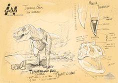 Tyrannosaurus Rex - Jurassic Movies, Jurassic Park Series, Jurassic Park 1993, Jurassic World Dinosaurs, Jurassic Park World, Jurrassic Park, Park Art, Dinosaur Drawing, Dinosaur Art