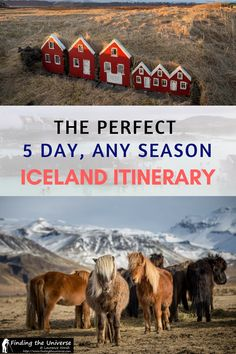 Planning a trip to Iceland? Our detailed itinerary for 5 days in Iceland has everything you need to know for visiting Iceland at any time of year, including a detailed day-by-day breakdown of the top sights and activities, plus lots of tips to help you make the most of your Iceland adventure! #travel #iceland #itinerary