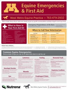 What a great resource from the College of Veterinary Medicine and West Metro Equine Practice. All horse owners should print this off and hang it in the barn and trailer.