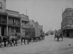 Horse-drawn carriages and carts Union St and Pyrmont Bridge Rd, Pyrmont in Sydney. Sydney, Australian Photography, The Jacksons, Horse Drawn, Historical Photos, Past, Transportation, Bridge, Street View