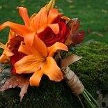Peach and Orange Themes on WeddingWire